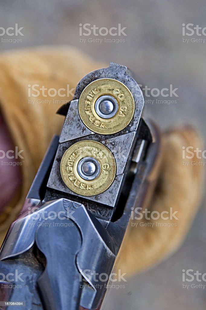 Shotgun Shells in 20 Gauge Over and Under stock photo