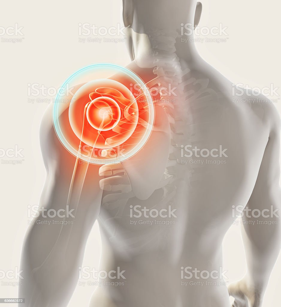 Shoulder painful skeleton x-ray, 3D illustration. stock photo