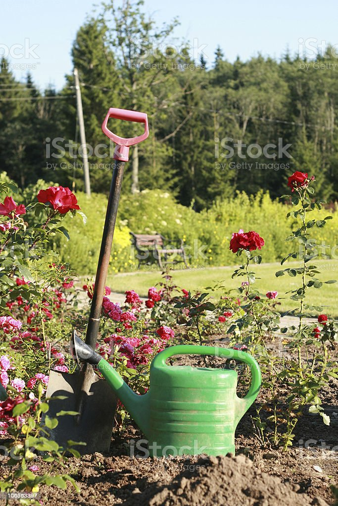 Shovel and the watering can royalty-free stock photo