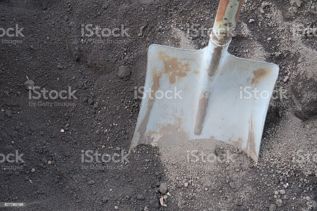 Shovel Digging in the Dirt stock photo