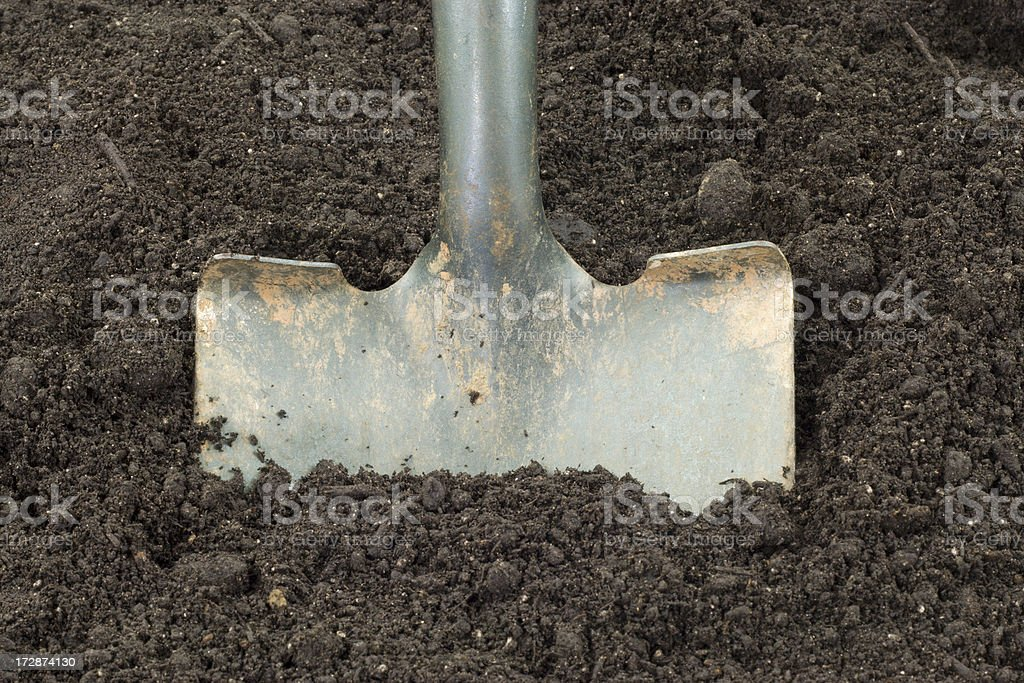 Shovel Digging royalty-free stock photo