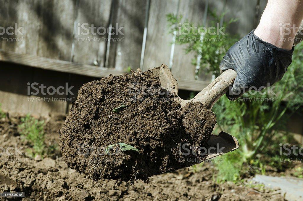 shovel full of dirt royalty-free stock photo