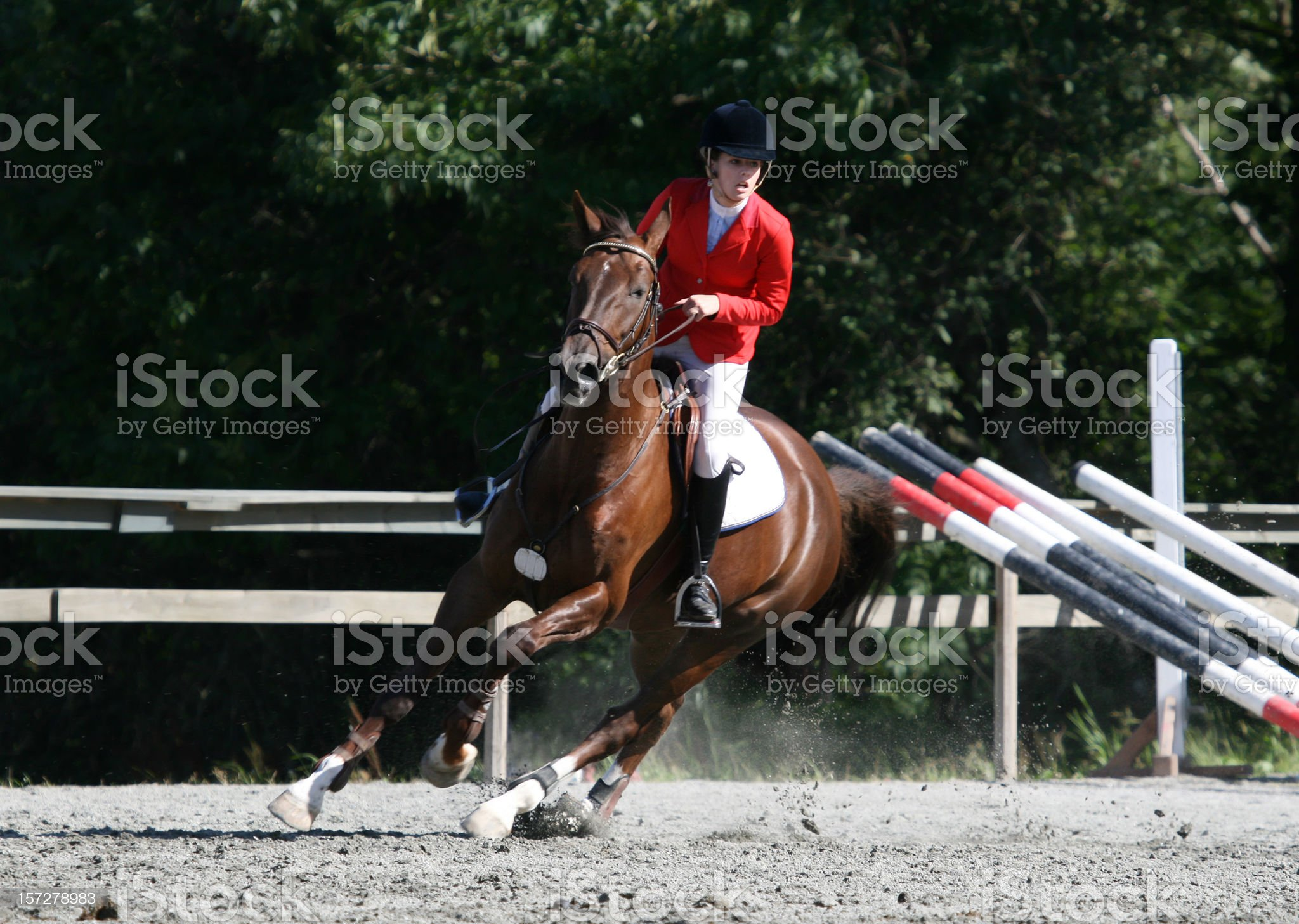 Show jumping competition royalty-free stock photo
