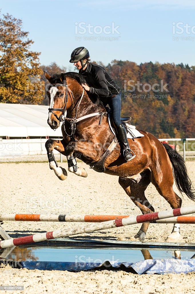 Show jumping training - horse with rider jumping over hurdle stock photo