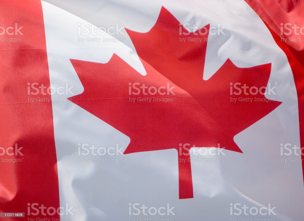 Show your colors royalty-free stock photo
