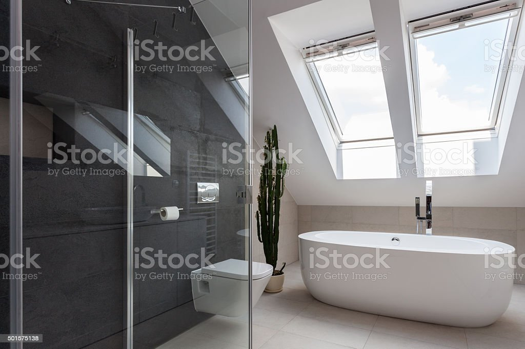 Shower cubicle and bathtub stock photo