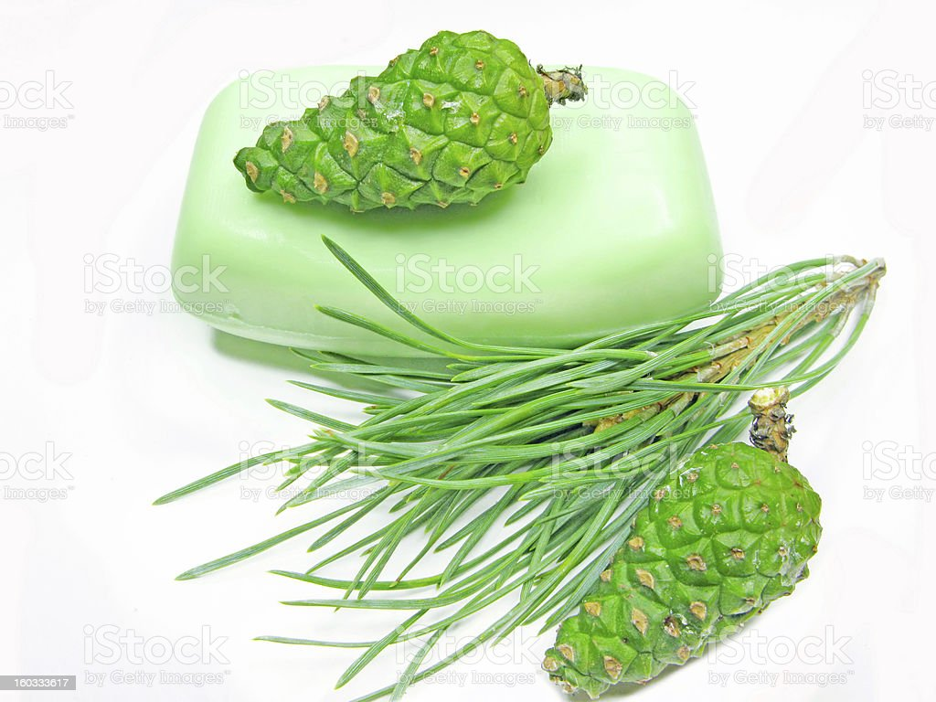 shower green soap royalty-free stock photo