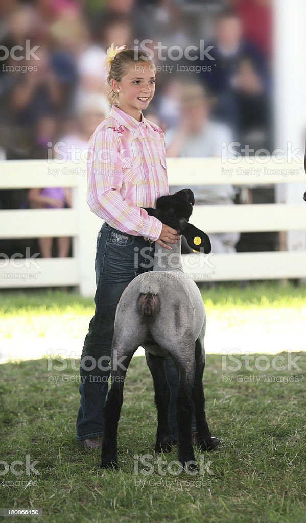 Showing at a County Fair royalty-free stock photo