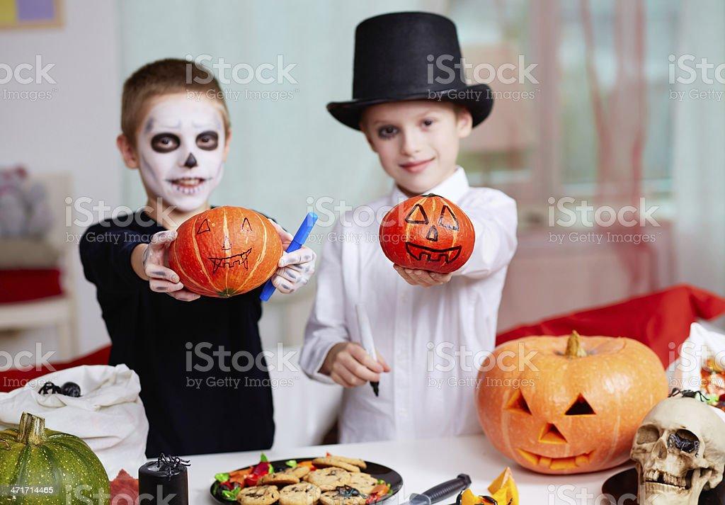 Showing pumpkins royalty-free stock photo