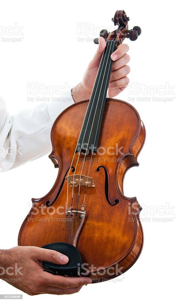 Showing viola stock photo
