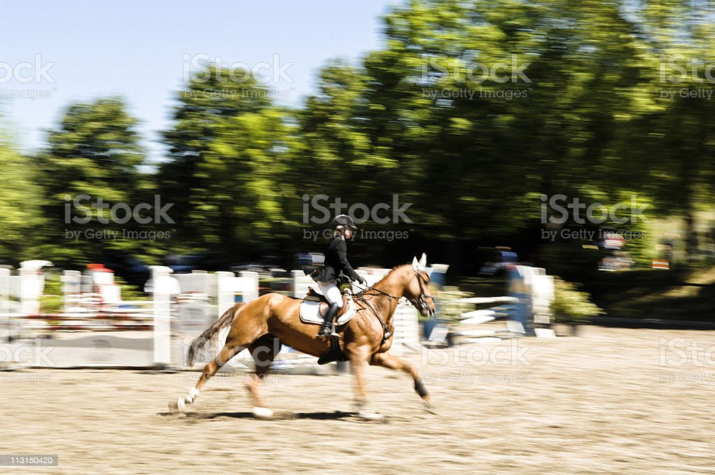 Showjumping in motion royalty-free stock photo