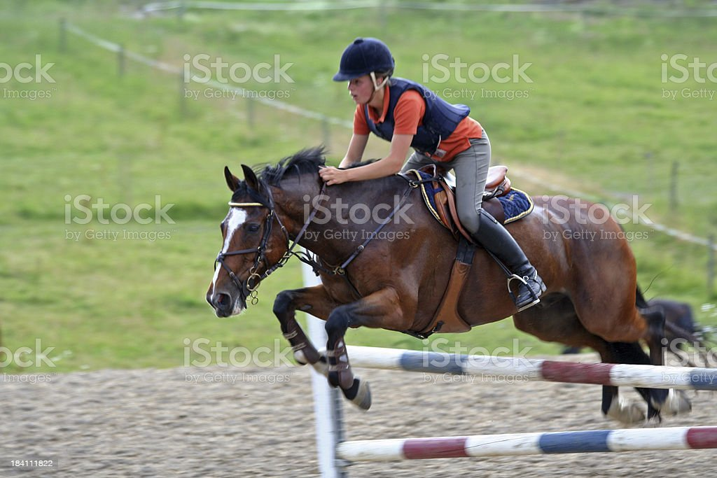 Showjumping in Norway royalty-free stock photo