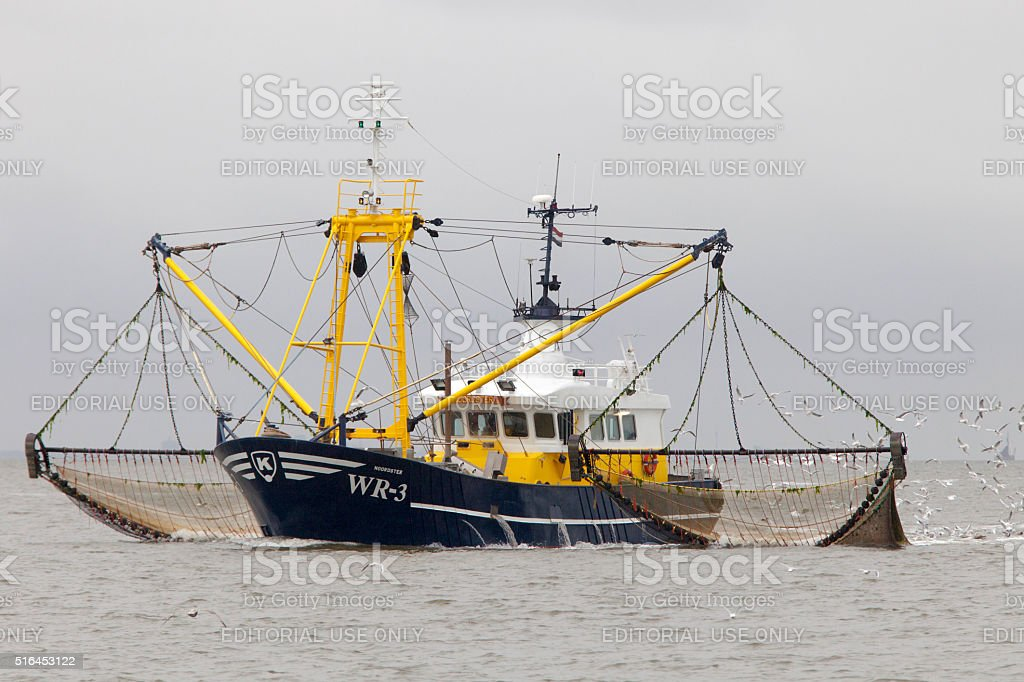 shrimp boat fishing for shrimps on the Wadden Sea stock photo