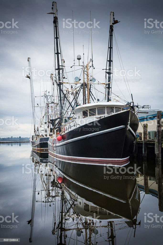 Shrimp Boats in Oriental Harbor stock photo