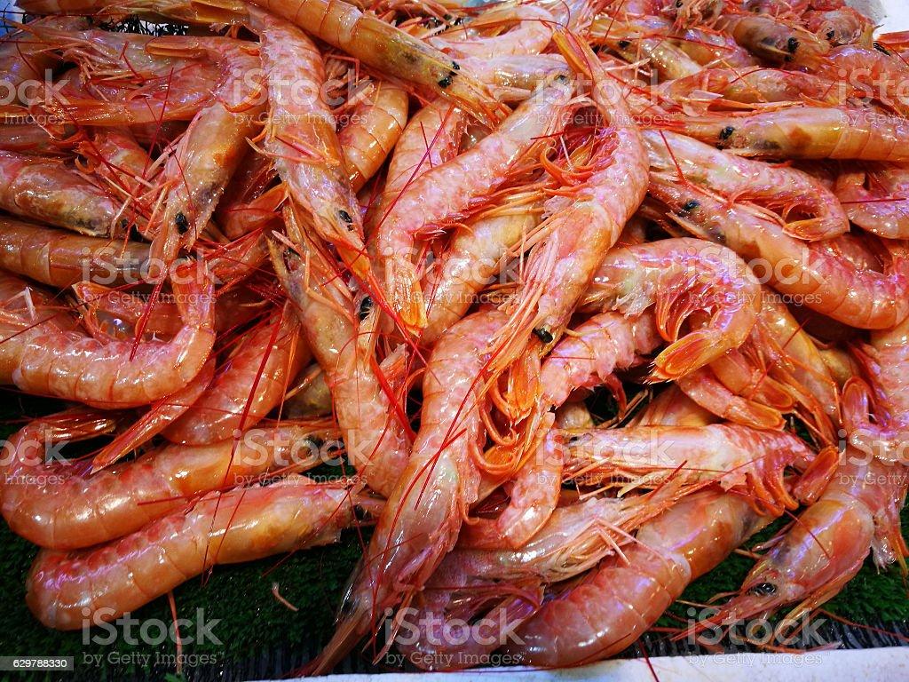Shrimp in fish market stock photo