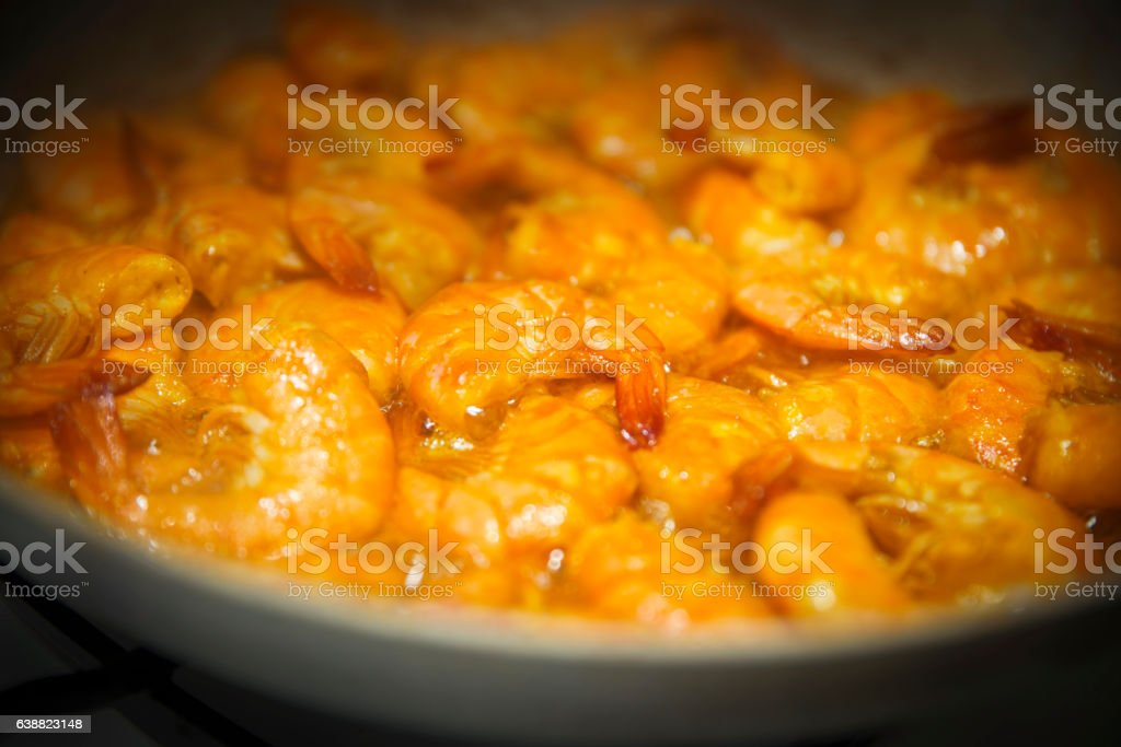 shrimp stock photo