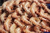 Shrimps at the Dubai fish market