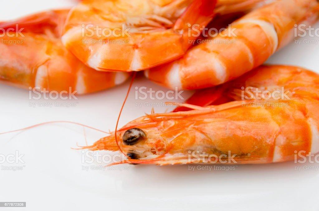 Shrimps close up stock photo