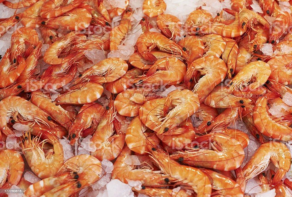 Shrimps for sale stock photo