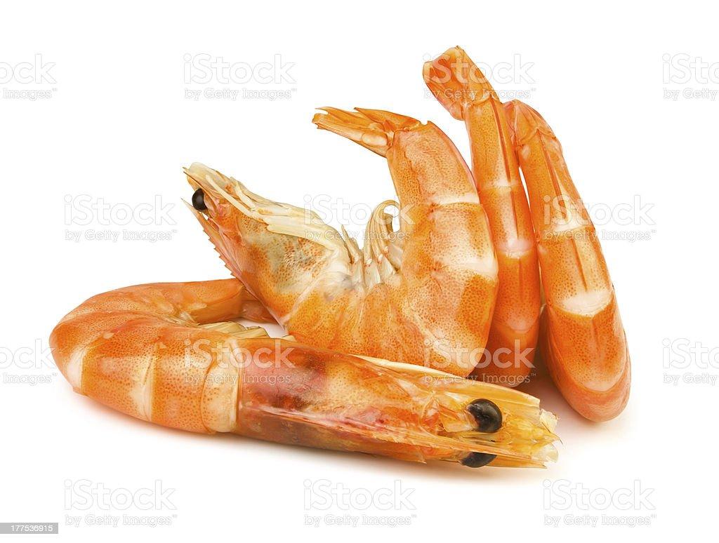 shrimps group stock photo