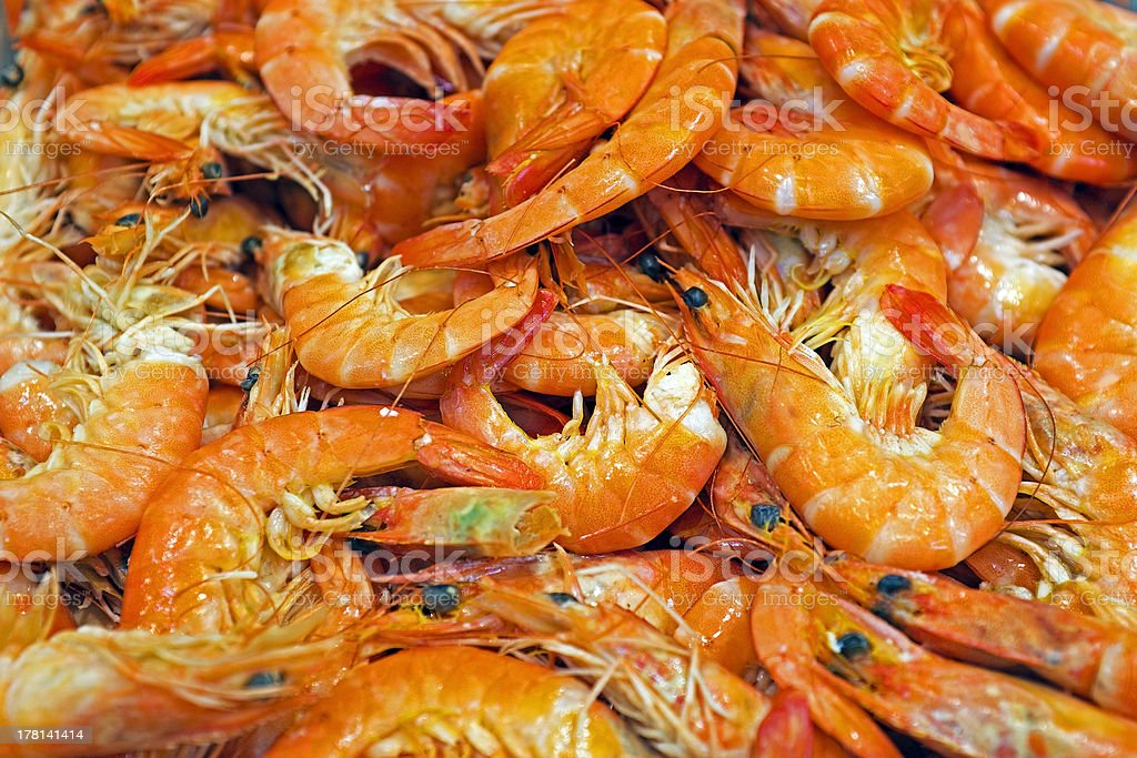 Shrimps in the fish market royalty-free stock photo