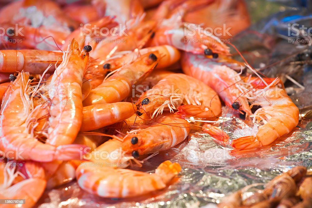 Shrimps on a fish market royalty-free stock photo