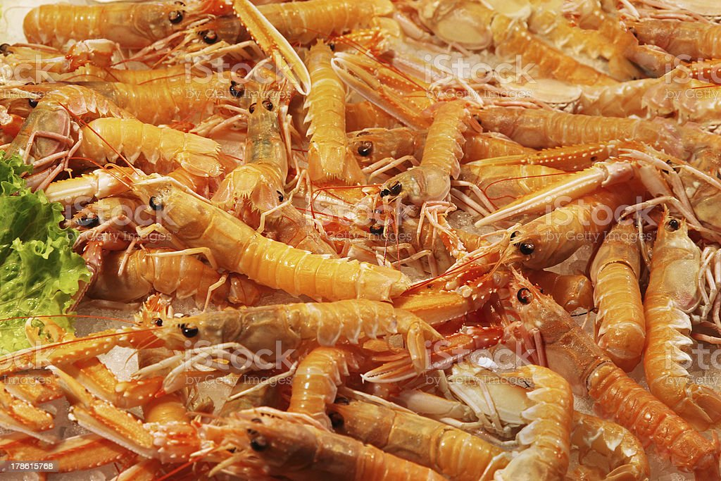 Shrimps pile royalty-free stock photo