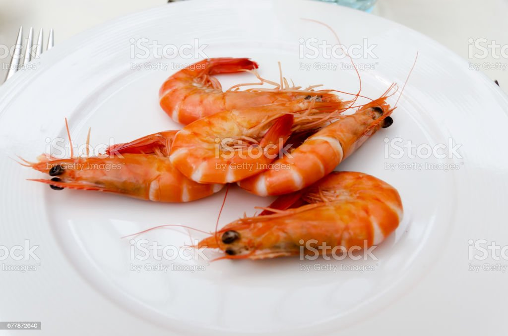 Shrimps plate stock photo
