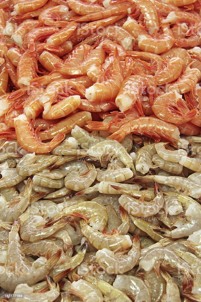 Shrimps tails stock photo