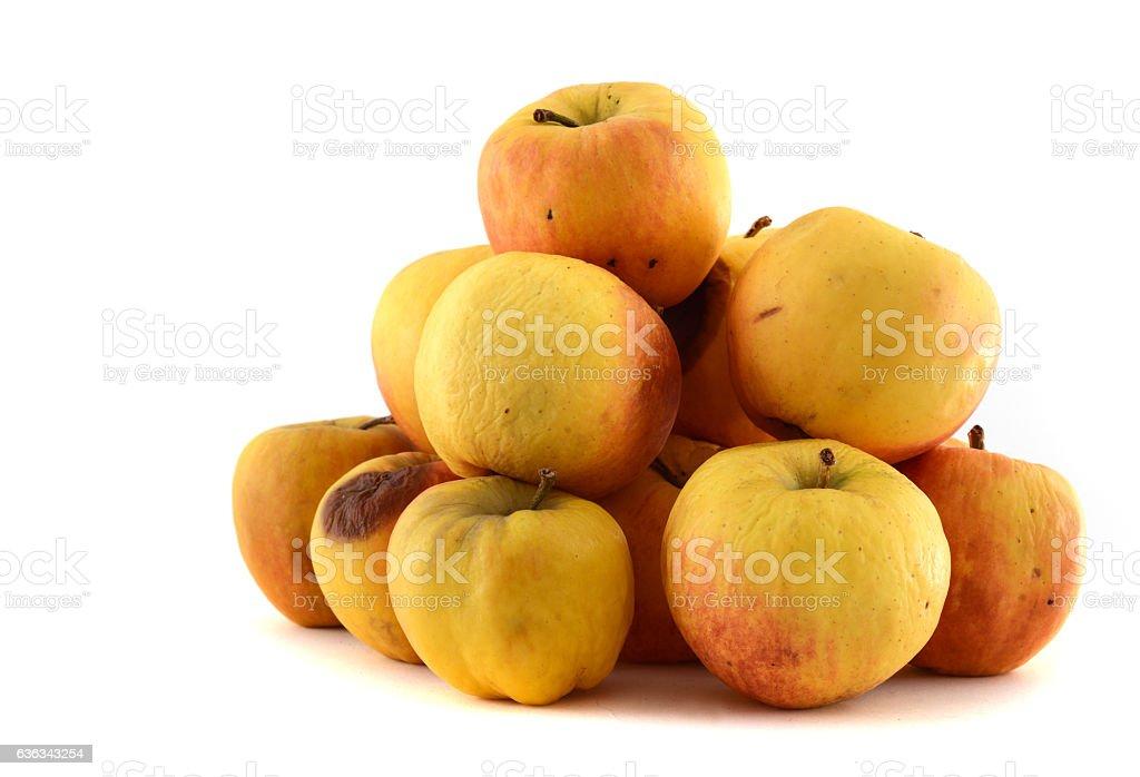 shriveld brown apples - alter verschrumpelter brauner Apfel stock photo