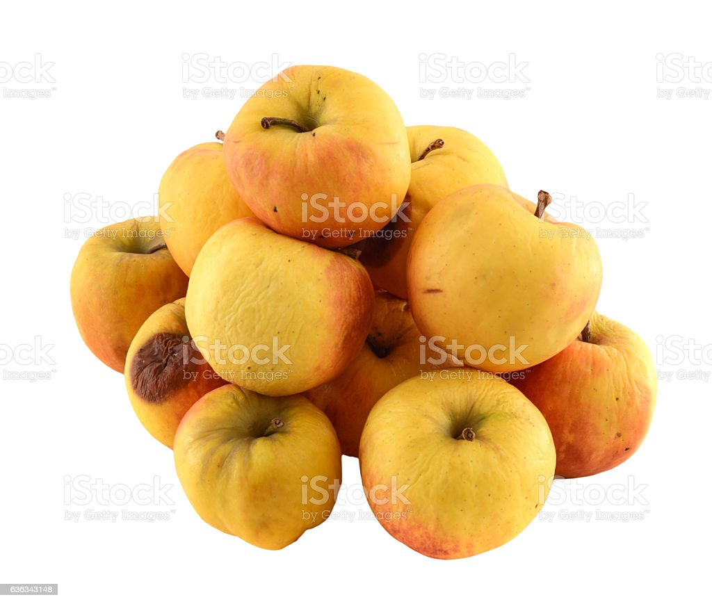 shriveld brown apples - alter verschrumpelter brauner Apfel stock photo