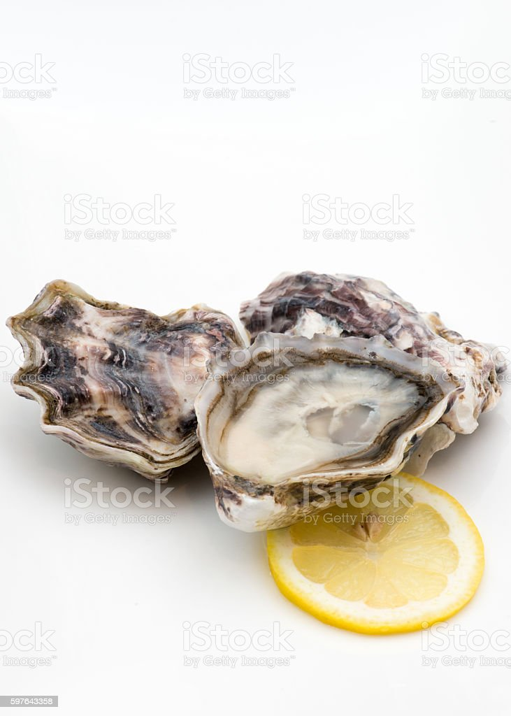Shucked cocktail oysters harvested in New Zealand stock photo