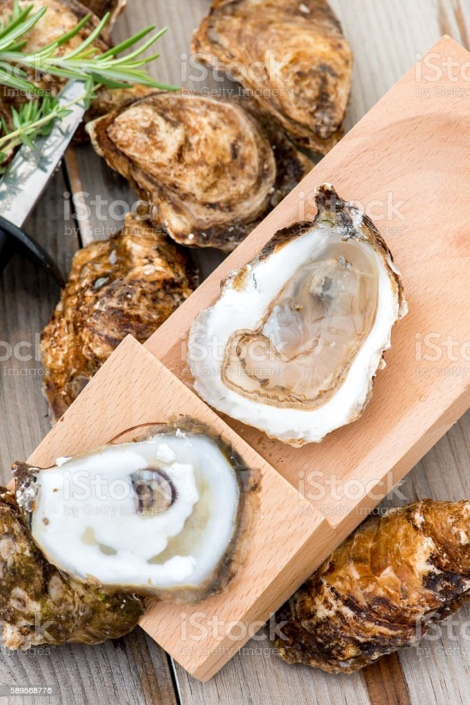 Shucked oysters on shucking board. stock photo