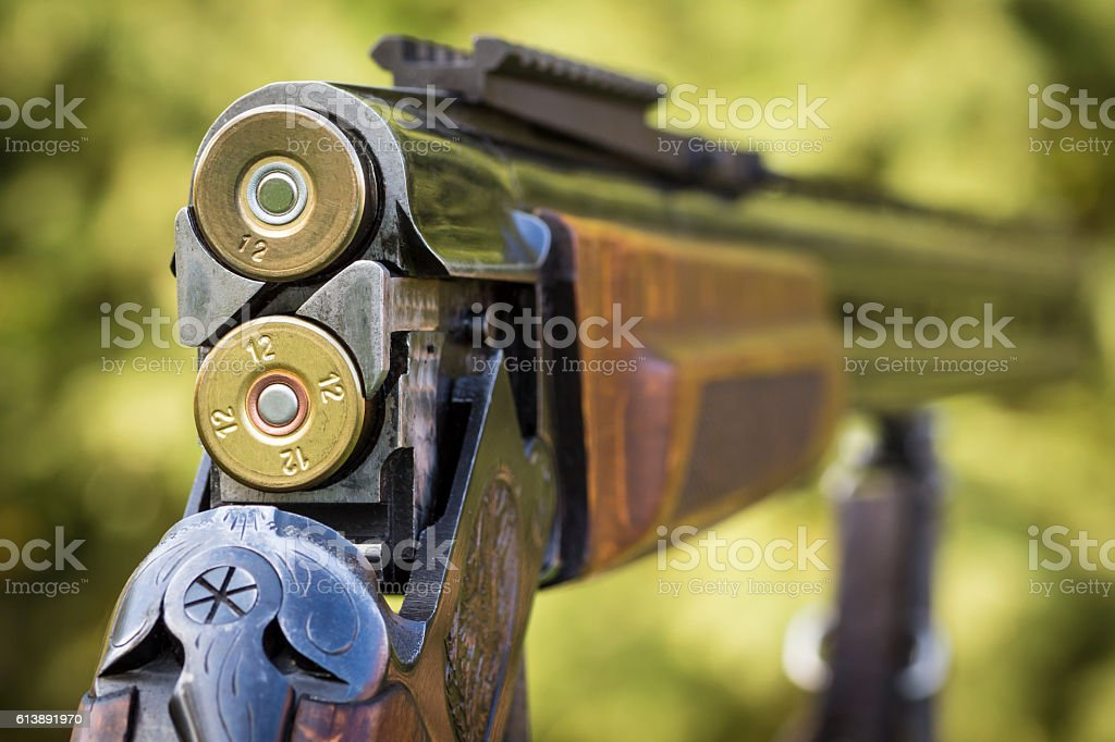 Shutter hunting rifle stock photo