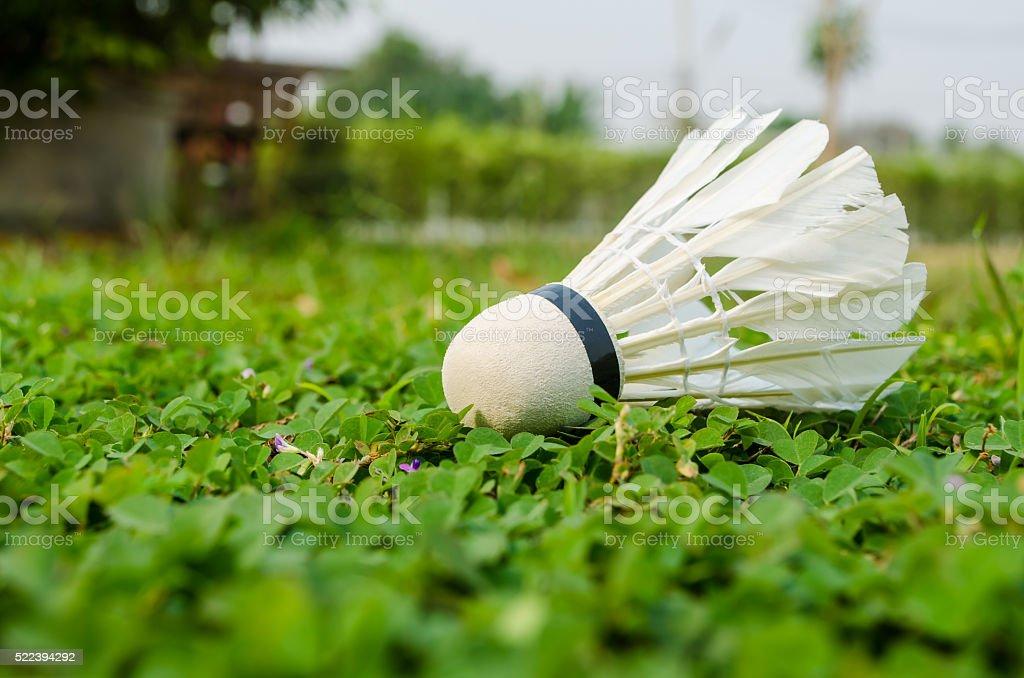 Shuttlecock on the grass stock photo