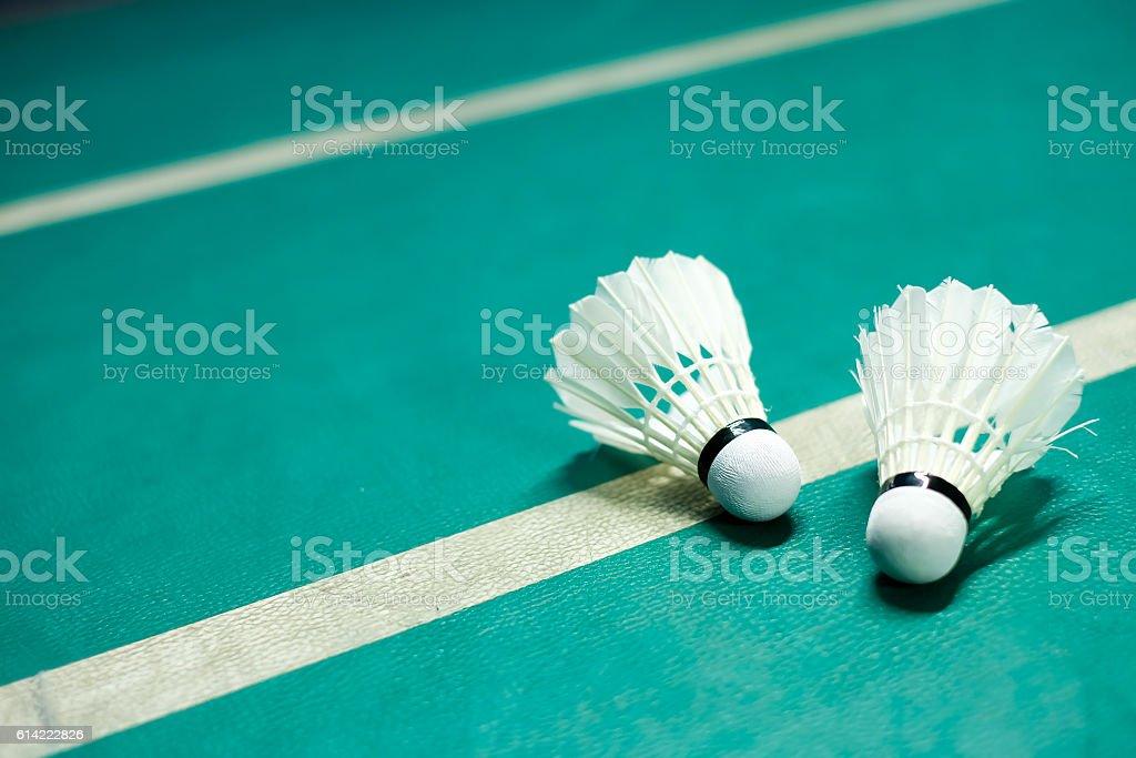 Shuttlecocks on badminton playing court stock photo