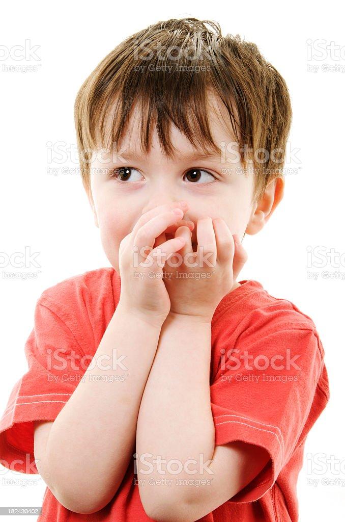 Shy Three Year Old Boy royalty-free stock photo