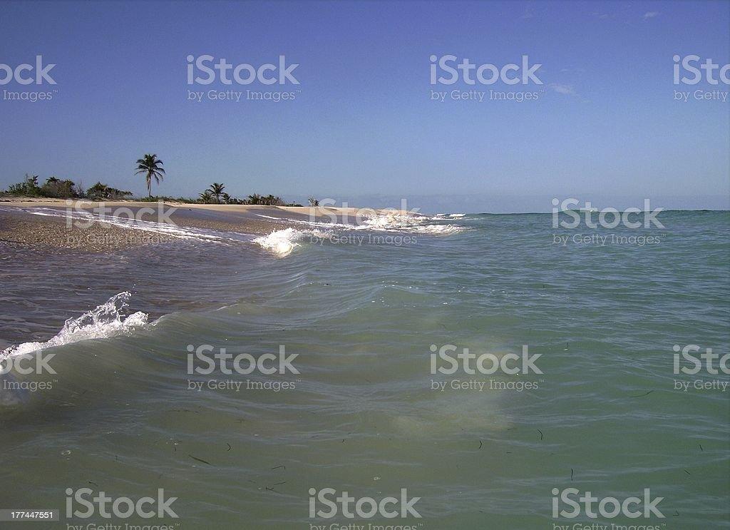 Sian Ka'an Biosphere reserve, Quintana Roo, Mexico royalty-free stock photo