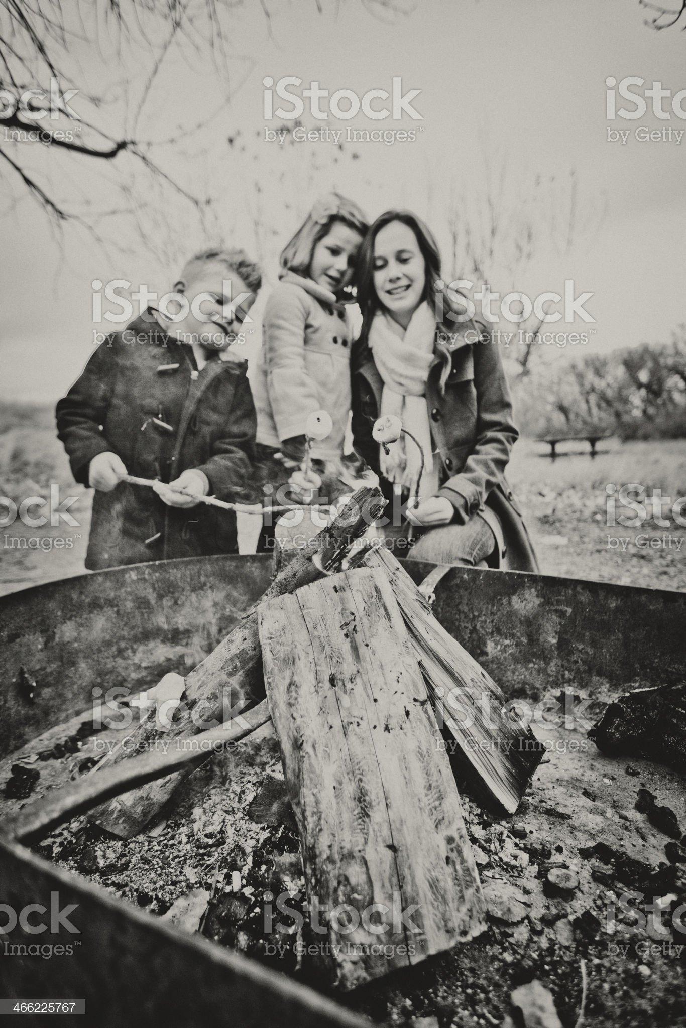 Siblings Enjoying Camp Fire royalty-free stock photo
