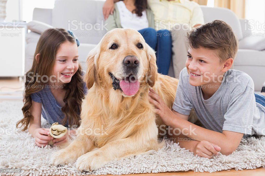 Siblings lying with dog while parents sitting on sofa stock photo