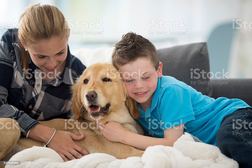 Siblings Petting Their Dog stock photo