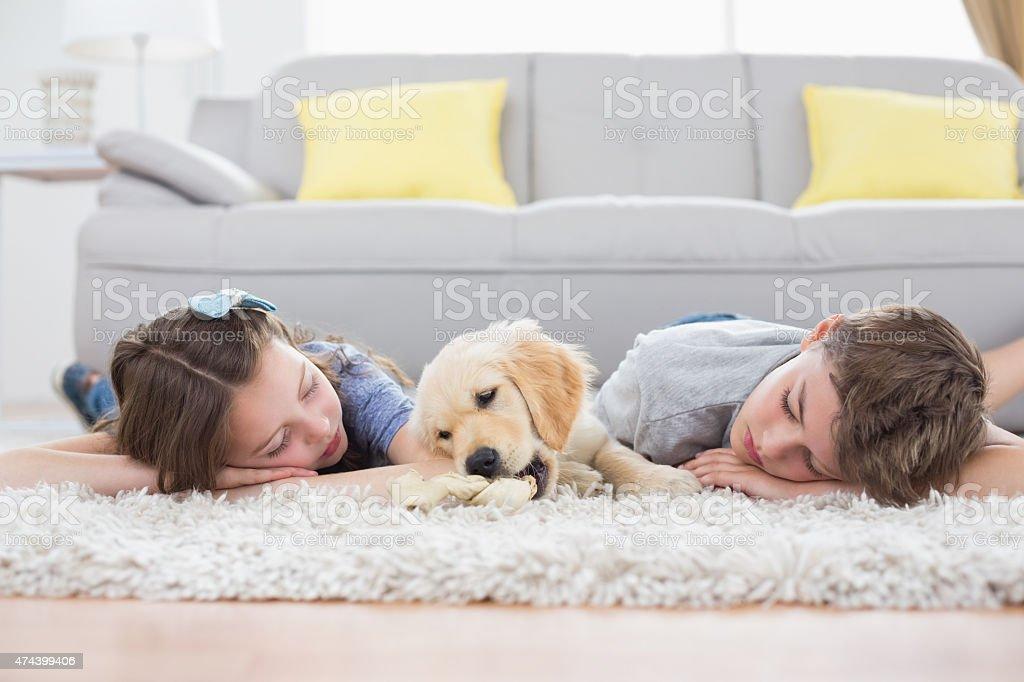 Siblings sleeping with dog on rug stock photo