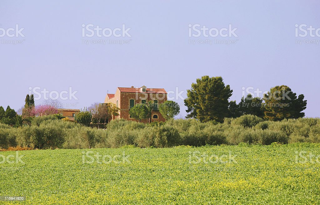 sicilian farm royalty-free stock photo