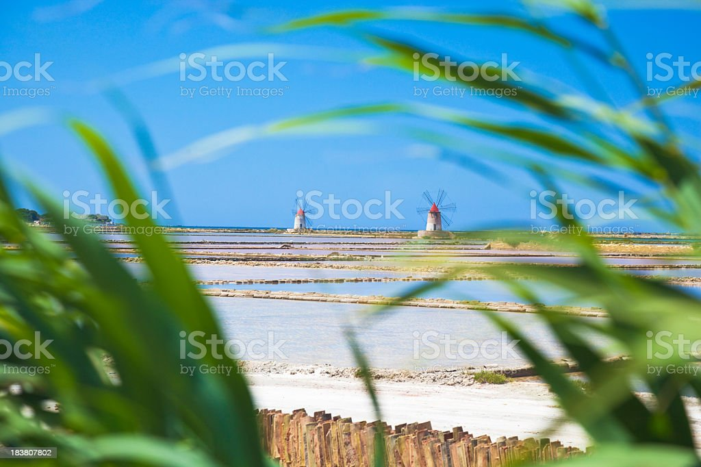 Sicilian salars stock photo