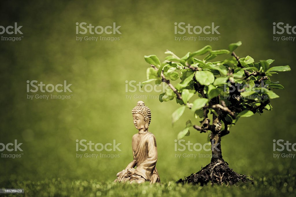 Siddhārtha under the bodhi tree stock photo