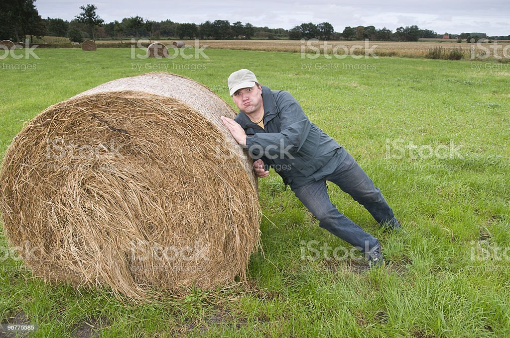 side at the bale of straw royalty-free stock photo