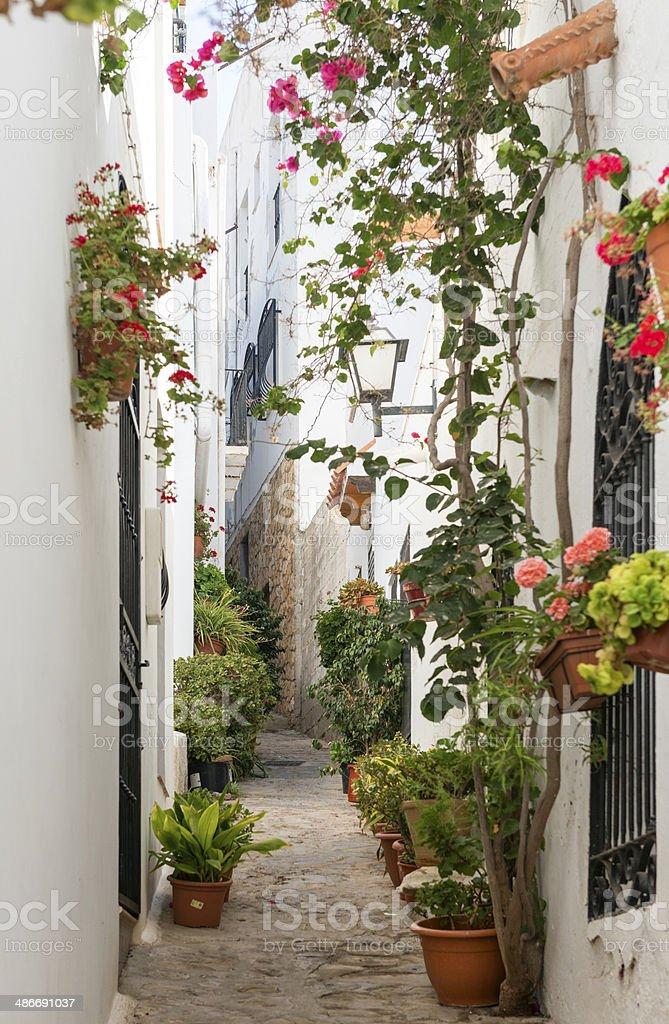 Side Street in Mojacar Village stock photo