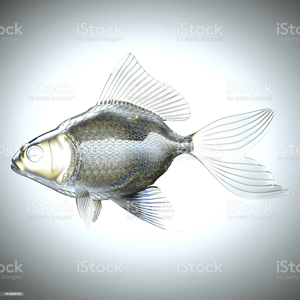Side view: fish made of glass royalty-free stock photo