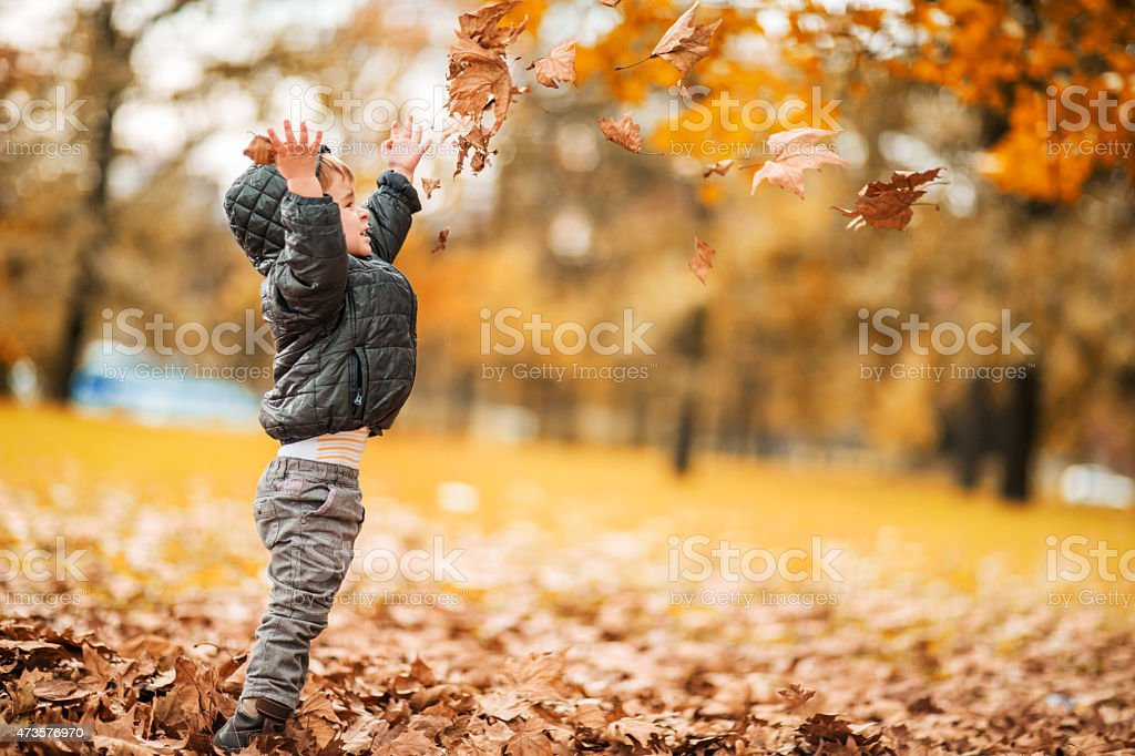 Side view of playful little boy throwing autumn leaves outdoors. stock photo