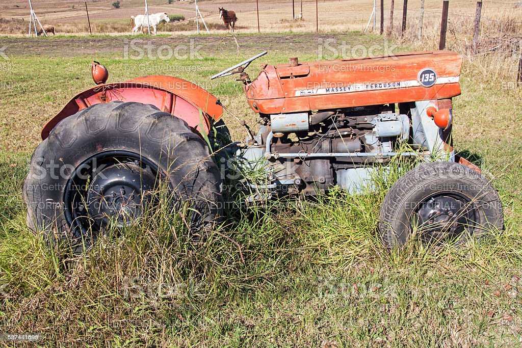 Side View of Vintage Tractor and Farm Animals stock photo